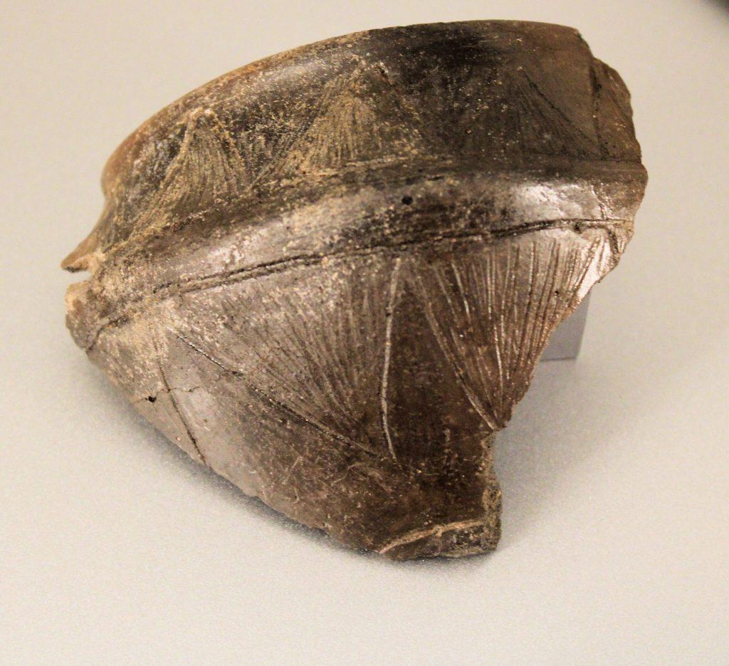 Grotta Verde - Frammenti di vasi
